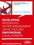 Policy Brief Capacity